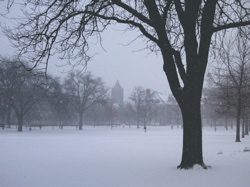 UIUC Quad in snow